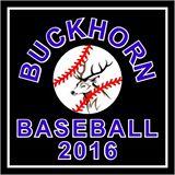 Wallenpaupack Buckhorn Baseball